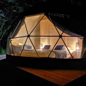 Chambres insolites en forêt du Domaine Jean Got : Peuplier argenté
